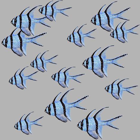 Banggai Cardinalfish Galore (grey) fabric by helenpdesigns on Spoonflower - custom fabric
