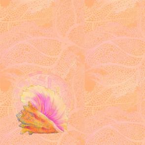 queen conch napkin B