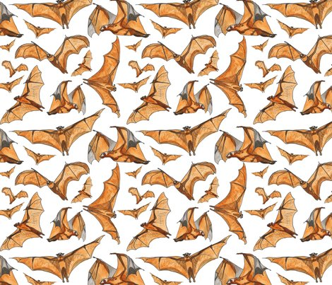Rflying-fox-bats-water-color_shop_preview