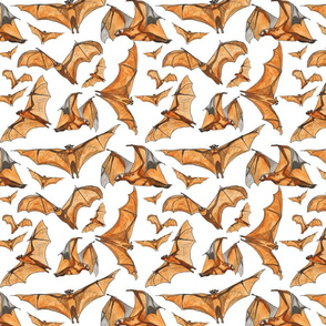 Rflying-fox-bats-water-color_shop_thumb