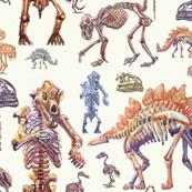 Museum bones