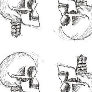 Skulls_Trans