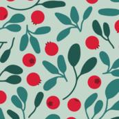 Cranberries seamless pattern