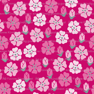 Spring flowers pink