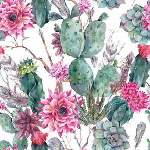 Pink Cacti Blossom