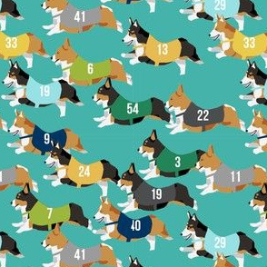 corgi runnnig  racing corgis dog fabric teal