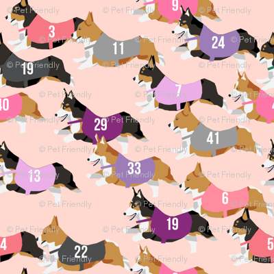 corgi runnnig  racing corgis dog fabric pink