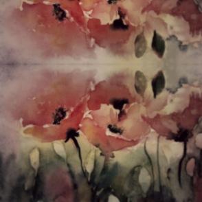 poppies at dusk