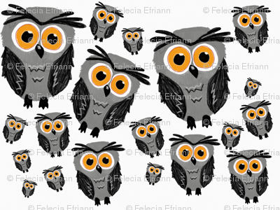 What a hoot