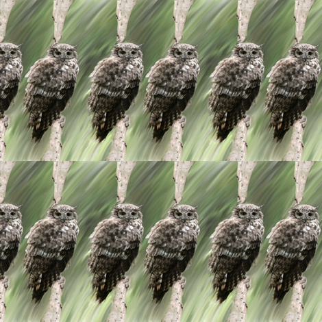 Snowy Owl fabric by fabric_is_my_name on Spoonflower - custom fabric