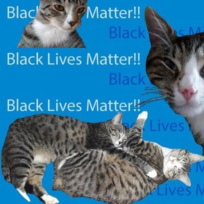 Cats and BLM