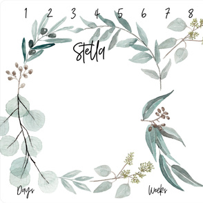 Eucalyptus Milestone Twins || Stella + Silas