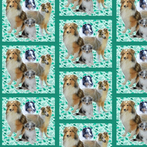 Shelty family fabric