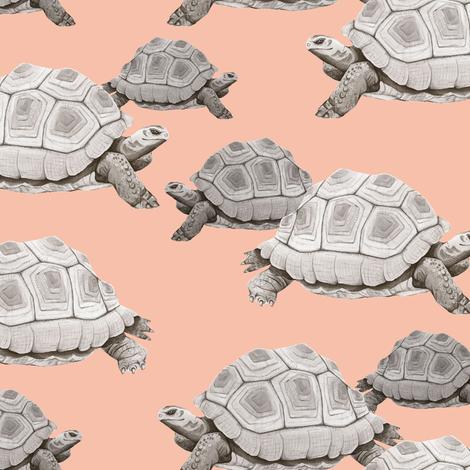 Turtles on Pink fabric by taraput on Spoonflower - custom fabric
