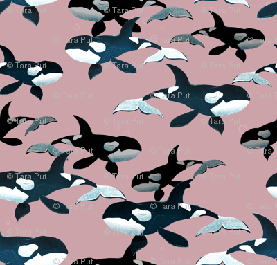 Orcas on Pink - Larger Scale
