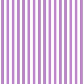 Stripes Vertical Amethyst