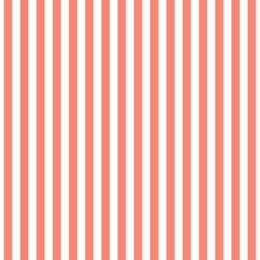 Stripes Vertical Coral