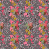 Rcolorful-leafes-on-gray-background_shop_thumb
