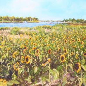 Sunflowers_ Reeve's Creek