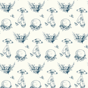 Space Toile