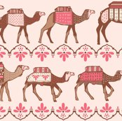 Rmarrakesh_camels_in_a_line_pink_and_brown_shop_thumb