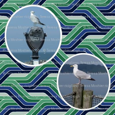 Sea Gulls on Wavy Water