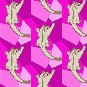 Cremino Sugar Glider on Pink Shapes