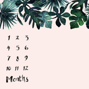 Tropical-Leaves-Blush-Months-42in_rotate