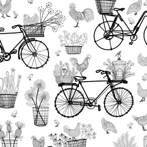 Bicycles for Africa 24x24