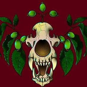 Ancient Bear Skull
