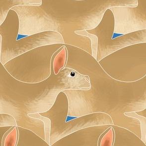 Kangaroo Gang Tan