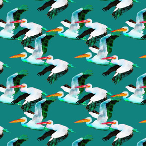 Flying Pelicans on Dark  Aqua Green