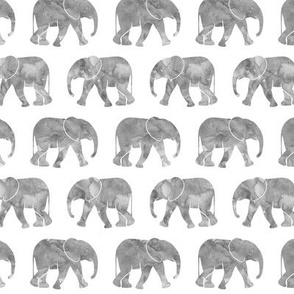 baby elephants - grey