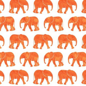 baby elephants - orange