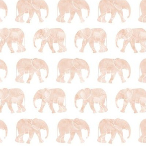 baby elephants - blush