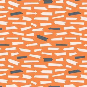 Orange Arrow Signs