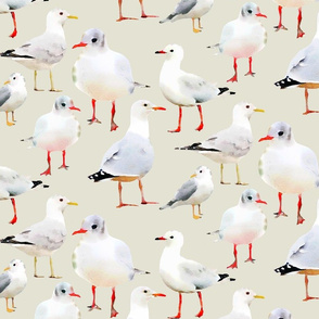 Flock of Seagulls Watercolor