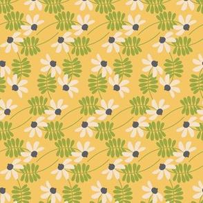 Meadowland daisy chains ~ daisy
