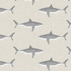 shark  ocean animals sharks tan