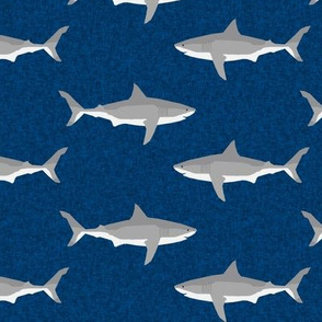 shark ocean animals sharks navy