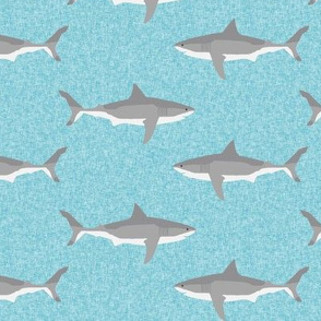 shark  ocean animals sharks blue