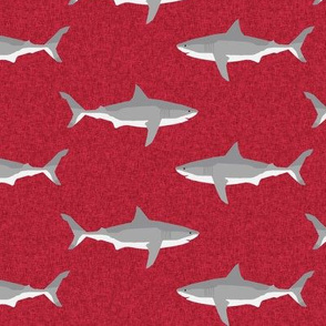 shark ocean animals sharks red