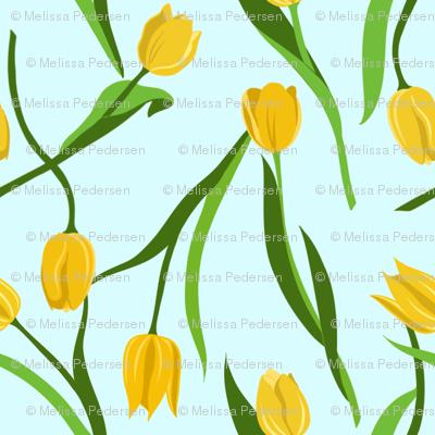 Large Yellow Tulips on Blue