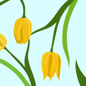 Large Yellow Tulips on Blue