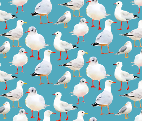 Seagulls on Aqua Blue fabric by lauriekentdesigns on Spoonflower - custom fabric