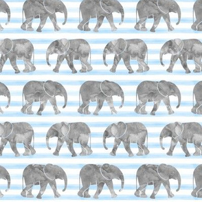 baby elephants - blue stripes