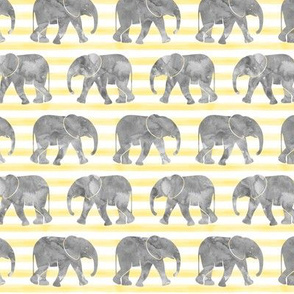 baby elephants - yellow stripes