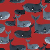 Rblue-whales-new-red_shop_thumb