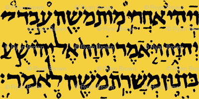 Hebrew on Saffron // Large