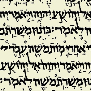 Hebrew on Parchment // Small